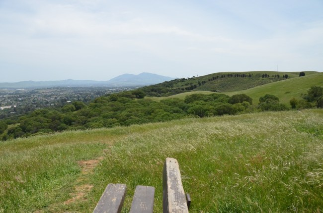 bench on top of a grassy hill
