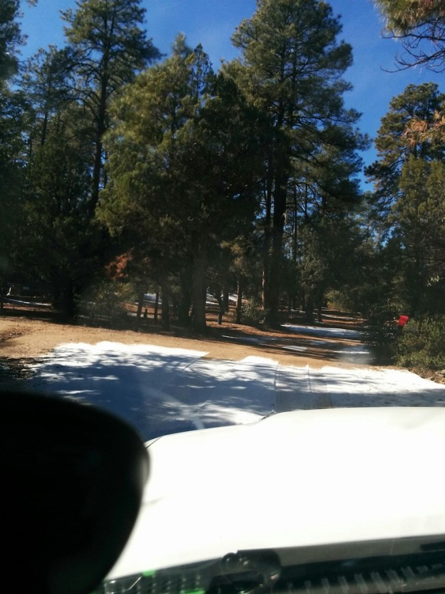 The entrance to Powell Springs Campground