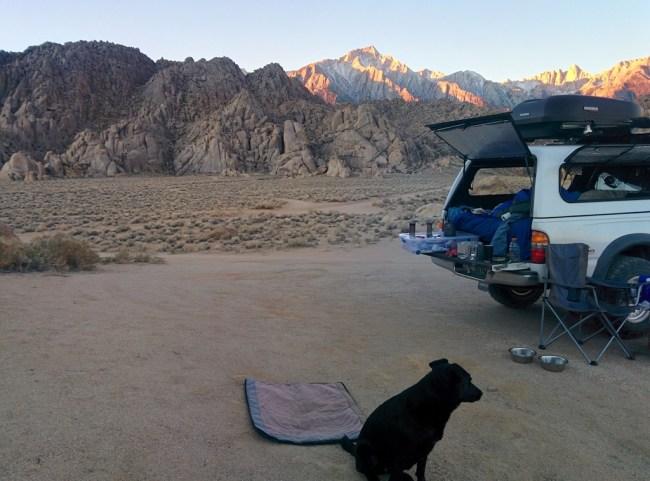 dog and Tacoma with Mount Whitney range bathed in twilight behind