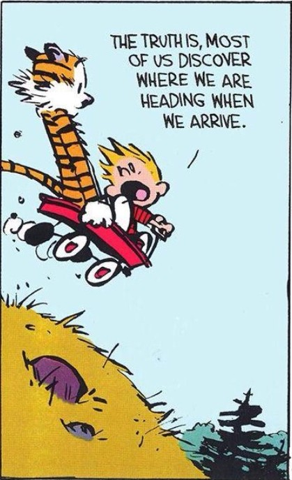 Calvin and Hobbes flying down a hill in their little red wagon