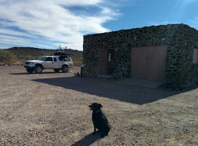My dog sitting in front of the Kofa Cabin