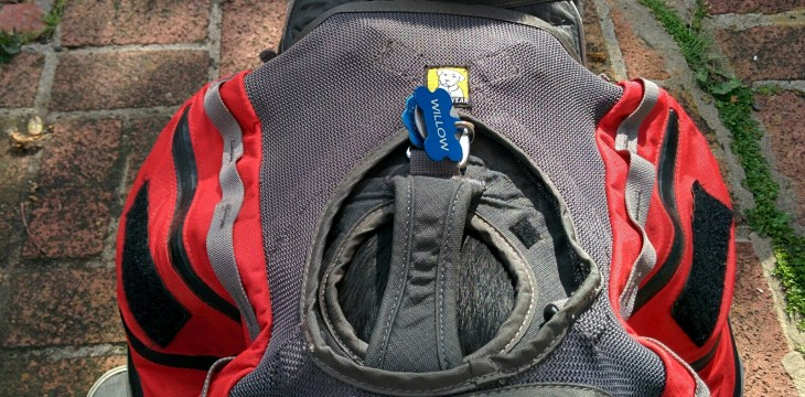 Handle on the Harness Accessible Through the Ruffwear Palisades Pack Webbing