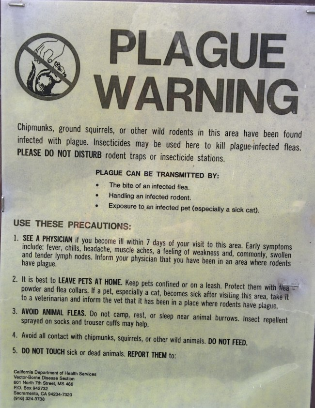 sign warning about plague in the campground