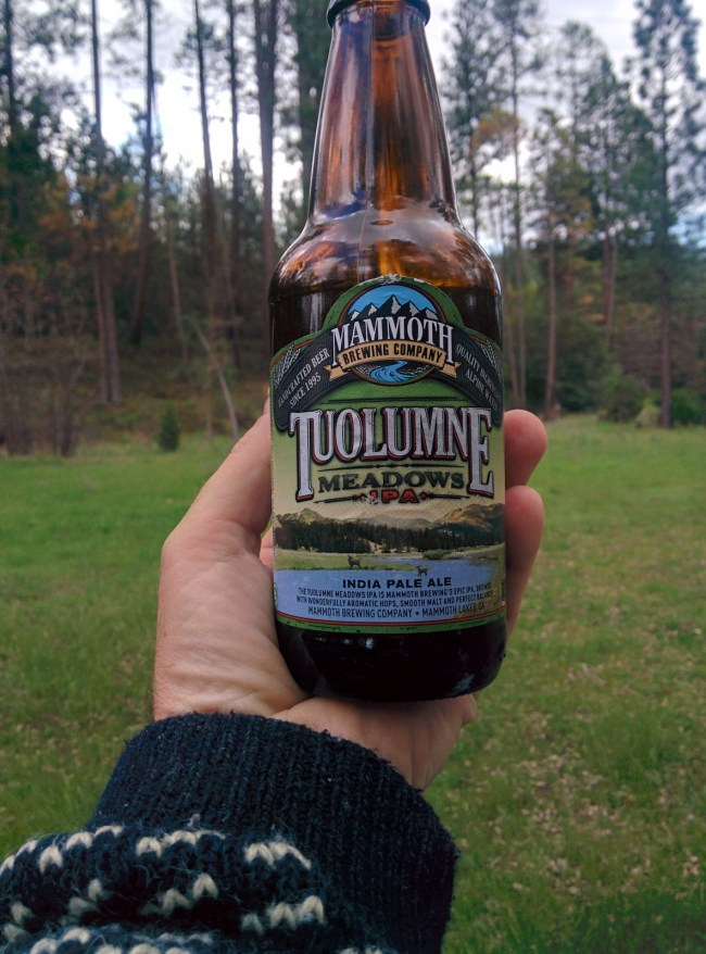 Tuolumne Meadows IPA from Mammoth Brewing Company
