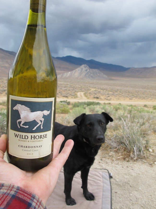 Wild Horse chardonnay, Willow and Striped Butte in the background