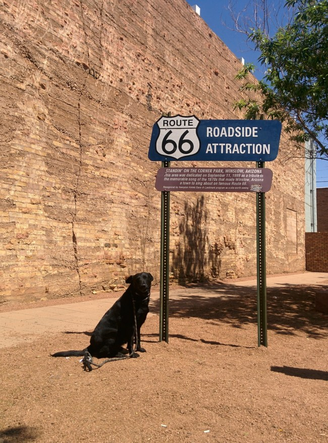 Willow Sitting Next To The Official Route 66 Attraction Sign