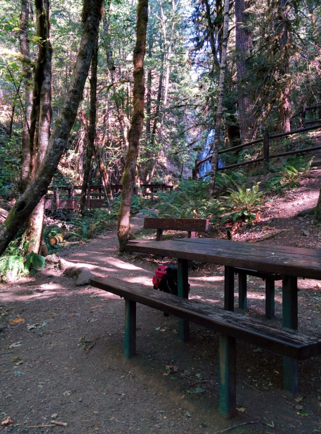 Picnic Area With Falls In The Background