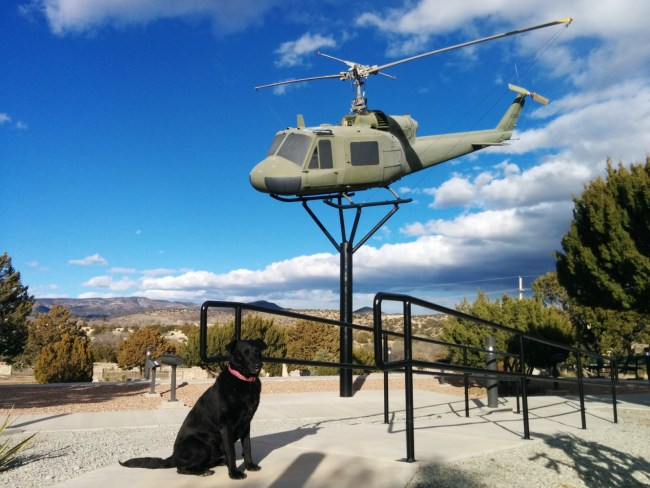 "Willow sitting under a Bell ""Huey"" helicopter on display"