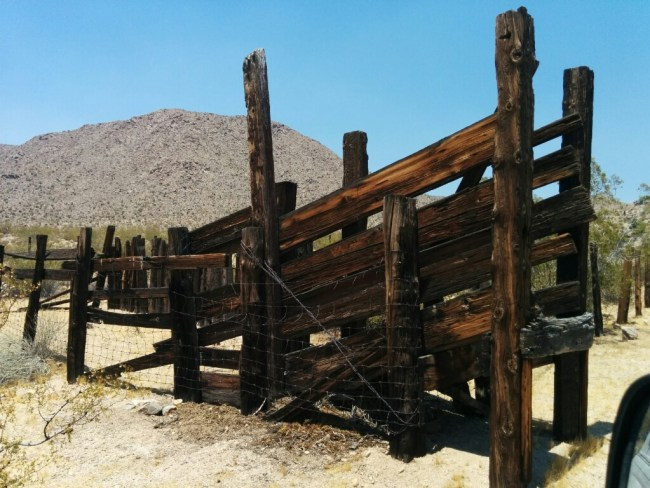 Cattle Ramp From When Cattle Were Allowed In The Reserve