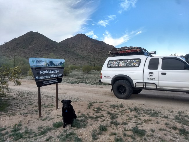 Willow in front of the North Maricopa Mountains Wilderness Area sign