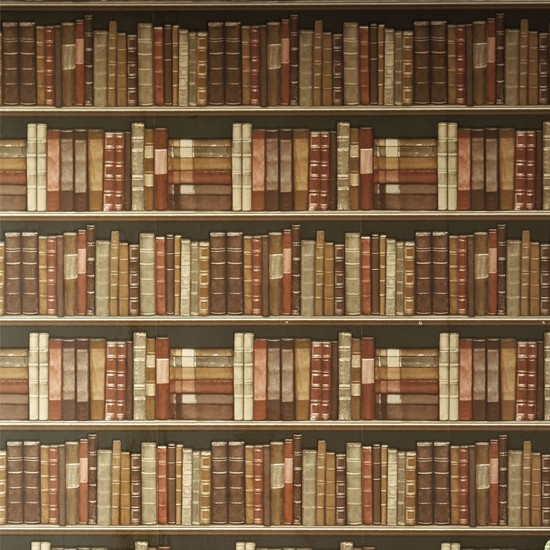 Podcast: Exploring The Bookshelves