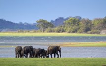 Huge Areas Of Sri Lanka Protected National Parks