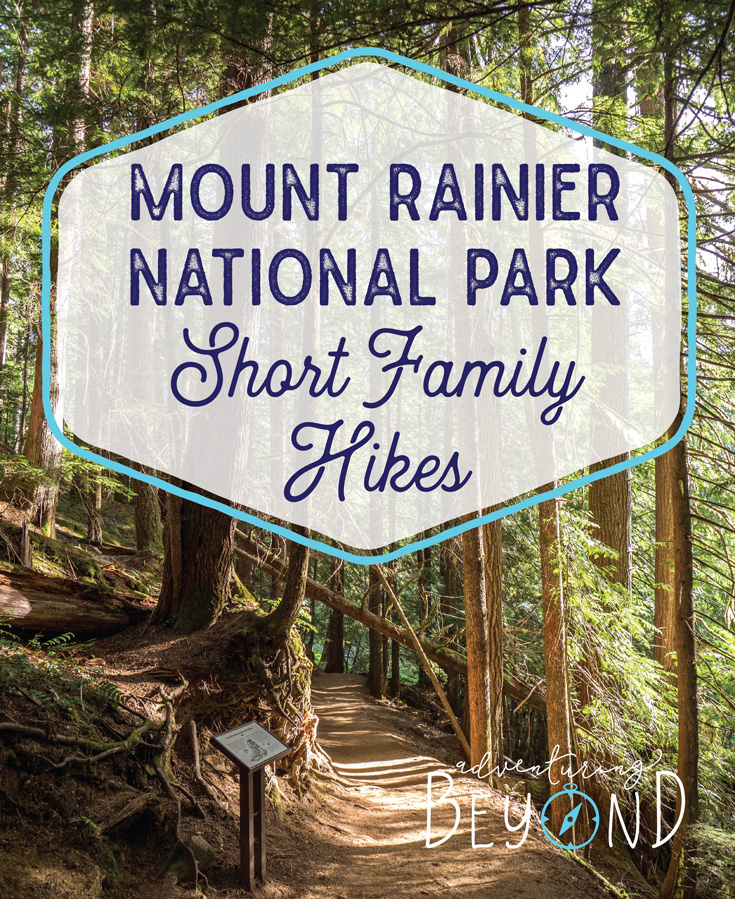 Mount Rainier National Park short family hikes