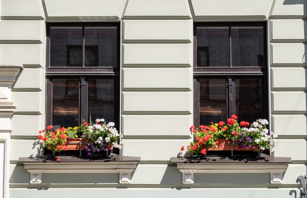 Riga Flowers