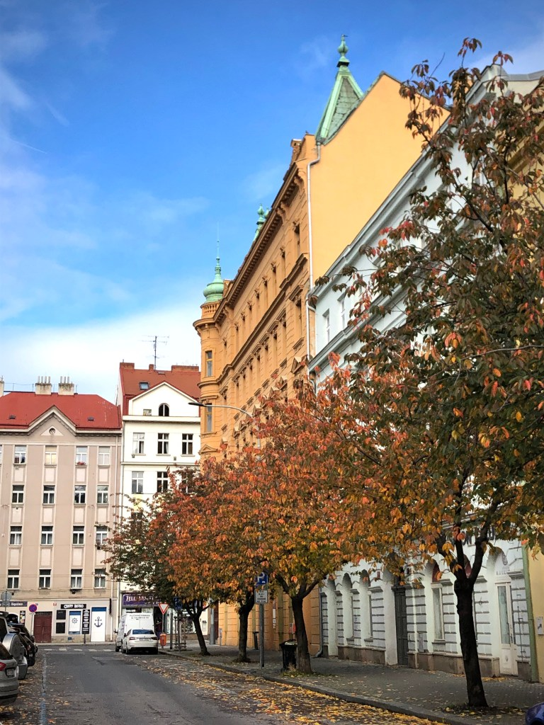 A yellow building in Karlín in the background, several trees with red-brown leaves in the foreground.