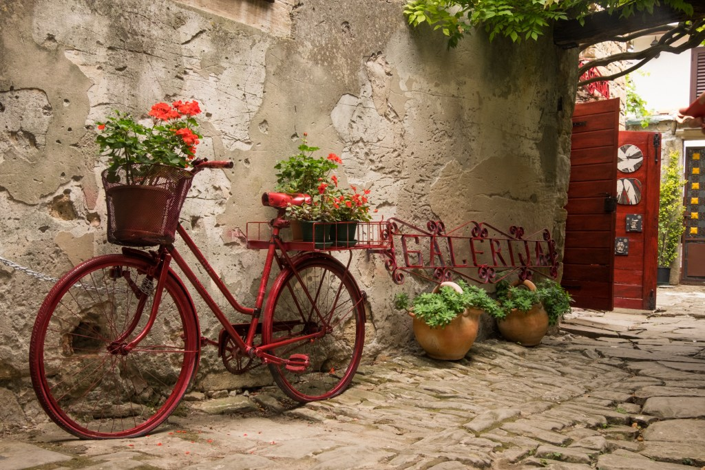 A red decorative bicycle with red geraniums in its basket in Grožnjan, Croatia.