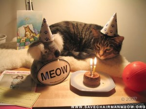 birthday_cat1_zpsec1c6875