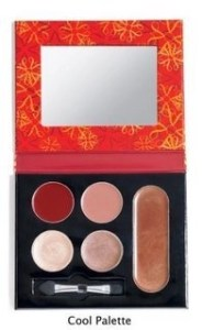 Jilian Dempsey for Avon Essential Beauty Palettes for Day, For Evening, For the Holidays