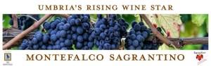 Italy's Sagrantino di Montefalco is Umbria's Rising Wine Star @Sagrantino #Sagrantinomonth