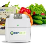 Are You Always Throwing Out Rotten Fruits and Vegetables?  Get a Berry Breeze