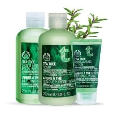 body shop tee tree oil trio