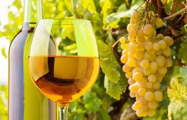 One Thousand Italian Wines and Counting: Two Wine Recaps @GamberoRossoUSA,  #Vinitalyusa