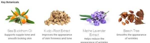 these are the key ingredients in Arbonne;RE9 anti-aging skincare