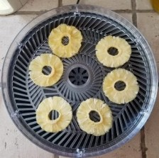 food dehydrator chefman dried pineapple