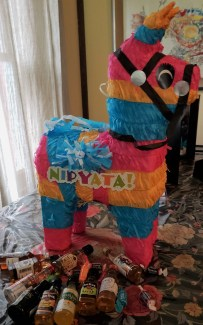 burro pinyata nippyata get one for your Summer Party