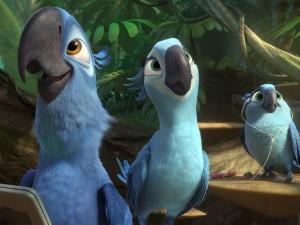 Rio 2 welke eind 2014 zal verschijnen. Deze animatiefilm vertelt het verhaal over  Spix's Ara 'Blu', hier links afgebeeld