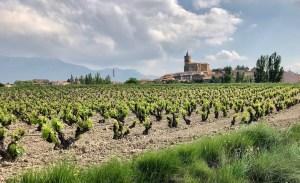 La rioja alavesa wine
