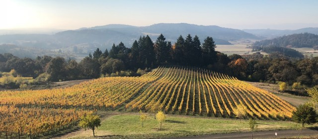 Video AdVINEture: Oregon's Willamette Valley