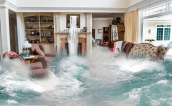 floods, flooded living room