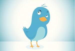 new twitter algorithm