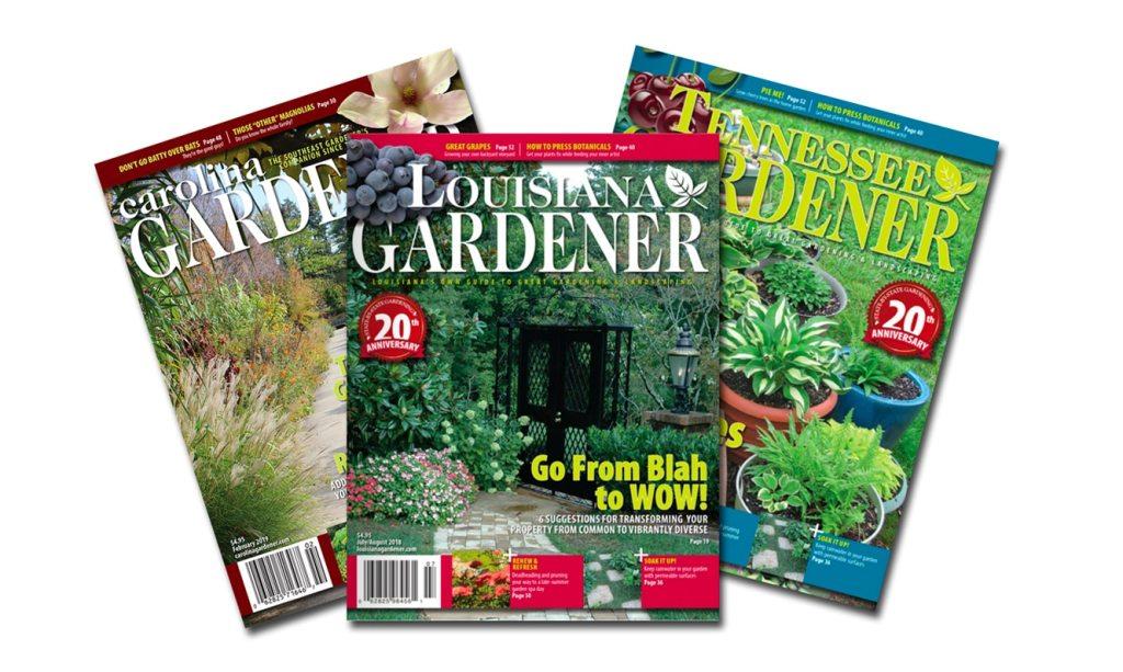 SbS Magazines