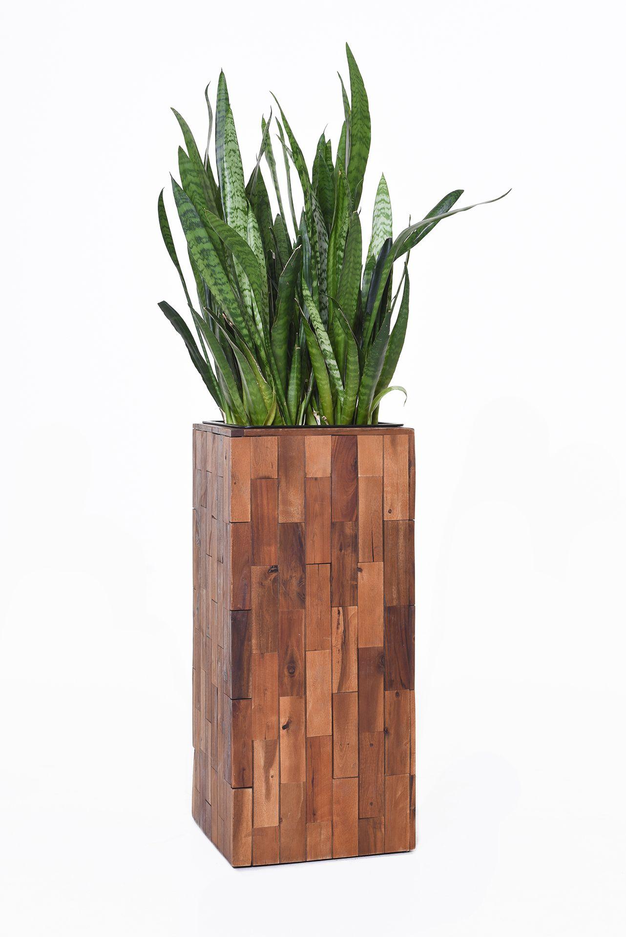 Pflanzkbel Blumenkbel Block Sule aus Holz Akazie 74