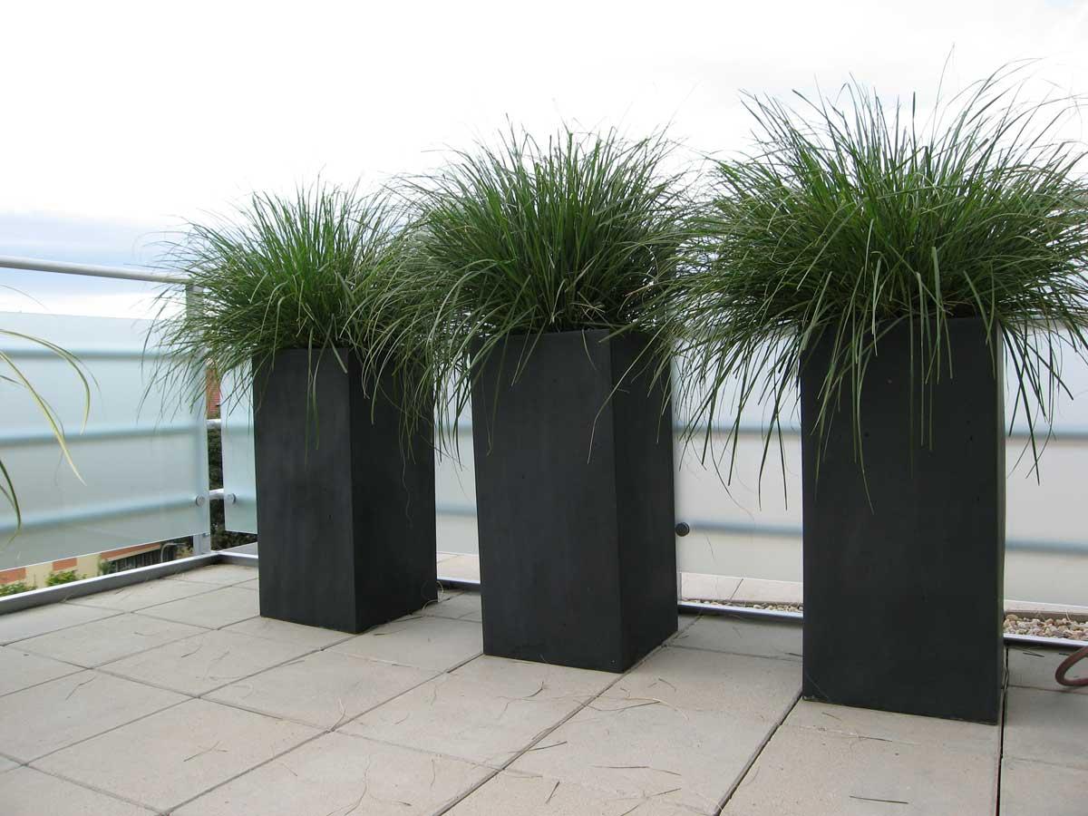 sichtschutz terrasse pflanzkubel | designmore, Gartengerate ideen