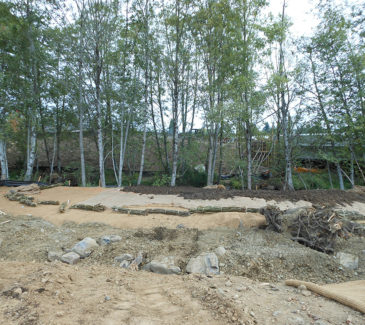 Johnson Creek Restoration - Existing Conditions