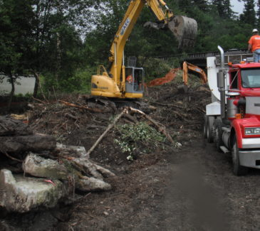 Excavator Work in Action