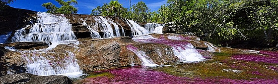 National Geographic caño cristales 560