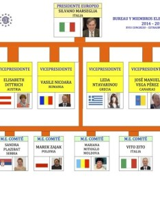 Organization chart of european aede from canarias web site also rh