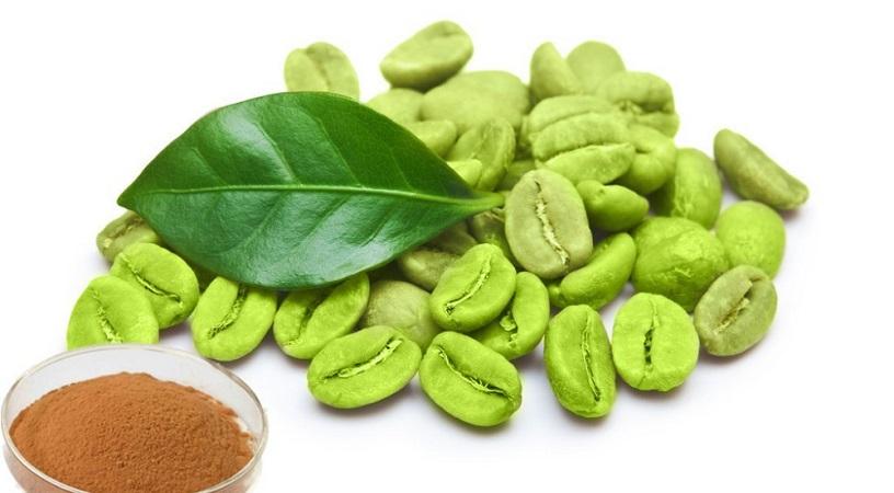 Acido Clorogenico Cafe Verde