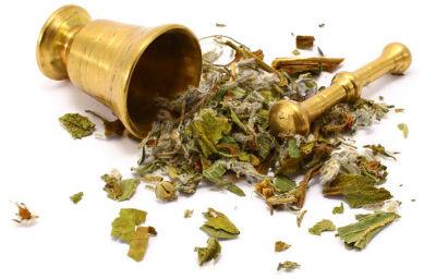 Que es la medicina tradicional