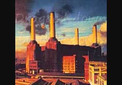 Pink Floyd – Dogs