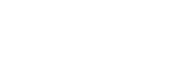 Immigratie- en Naturalisatiedienst
