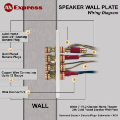 Outdoor Speaker Wiring Diagram Calibre Thermo Fan 7.1 Wall Plate For With Free Shipping|| Av Express