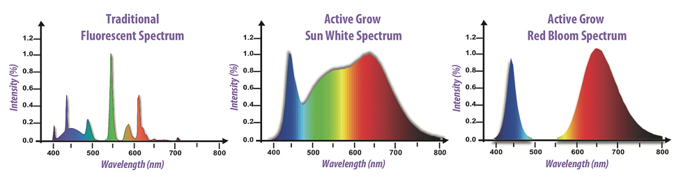 Light spectrum for orchid LED lights