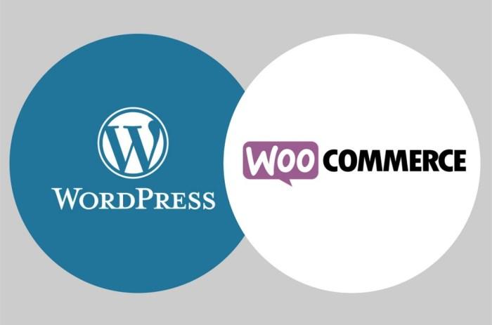 Formation WordPress à Aurillac Cantal