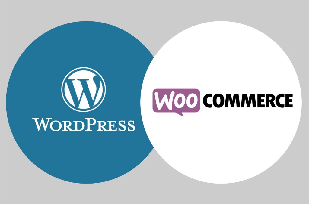 Formaion Wordpress Woocommerce à Saint-Etienne Loire