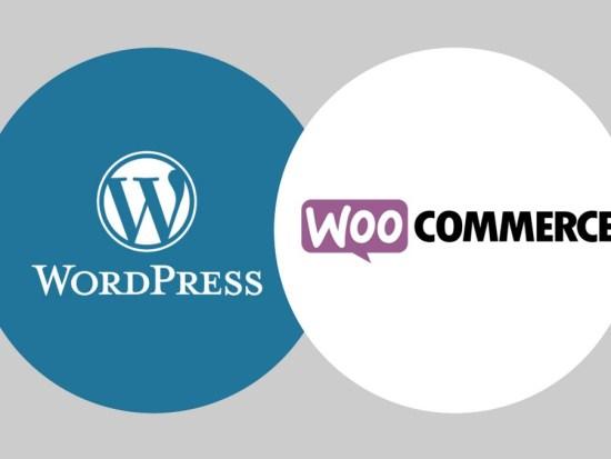 Formaion WordPress Woocommerce à Saint-Etienne Loire